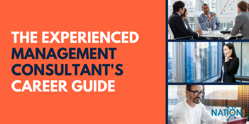 management consultant a career guide for experienced independents rh nation1099 com